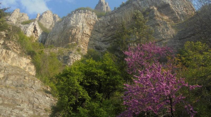Планински водачи ще посрещат германски туристи в защитените ни територии
