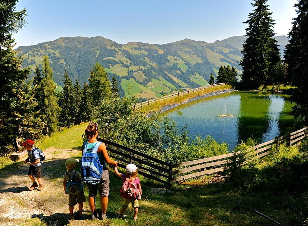 пейзаж от алпбах, тиролски алпи, австрия