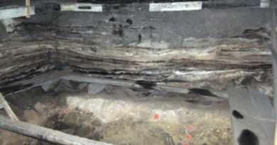 Денисова пещера, Сибир