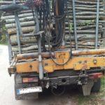 """Мораториум върху сечите в държавните гори и законодателни промени искат от """"За да остане природа в България"""""""