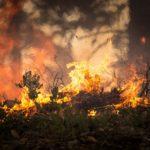 Пожари горят в Рила и Стара планина
