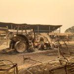 Пожарите в Австралия изпепелиха ски курорт