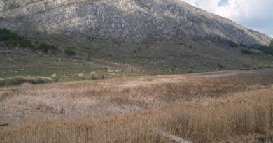 драгоманско блато чепън планина