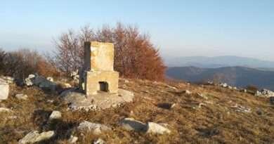 връх Козница