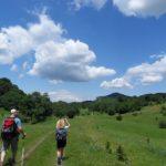 Летни еднодневни маршрути из Врачанския Балкан
