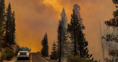 национален парк йосемити пожар